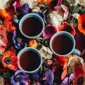 Le printemps est là !  Les projets fleurissent pour Valini Coffee... On vous en dit plus rapidement !  Bonne semaine à vous !  #coffeetime #cafe #café #coffee #barista #baristagram #baristalife #espresso #doppio #cortado #cappuccino #coffeefeature #mug #latteart #tasse #coffeeart #valinicoffee #valini_coffee #roaster #nimes #lyon #coffeshop #coffeeinspiration #spring #shop #ilovecoffeemagazine #coffeeroaster